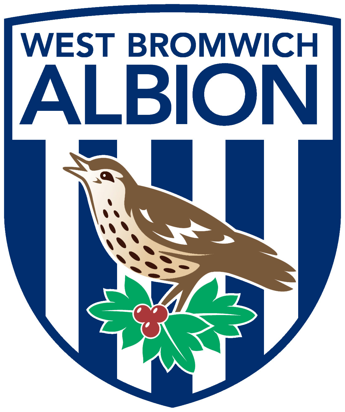 Holler Extends Partnership With West Bromwich Albion